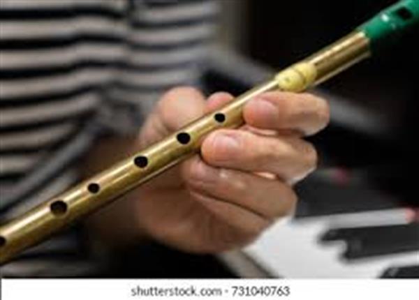 Tin Whistle - Beginners - MONDAYS